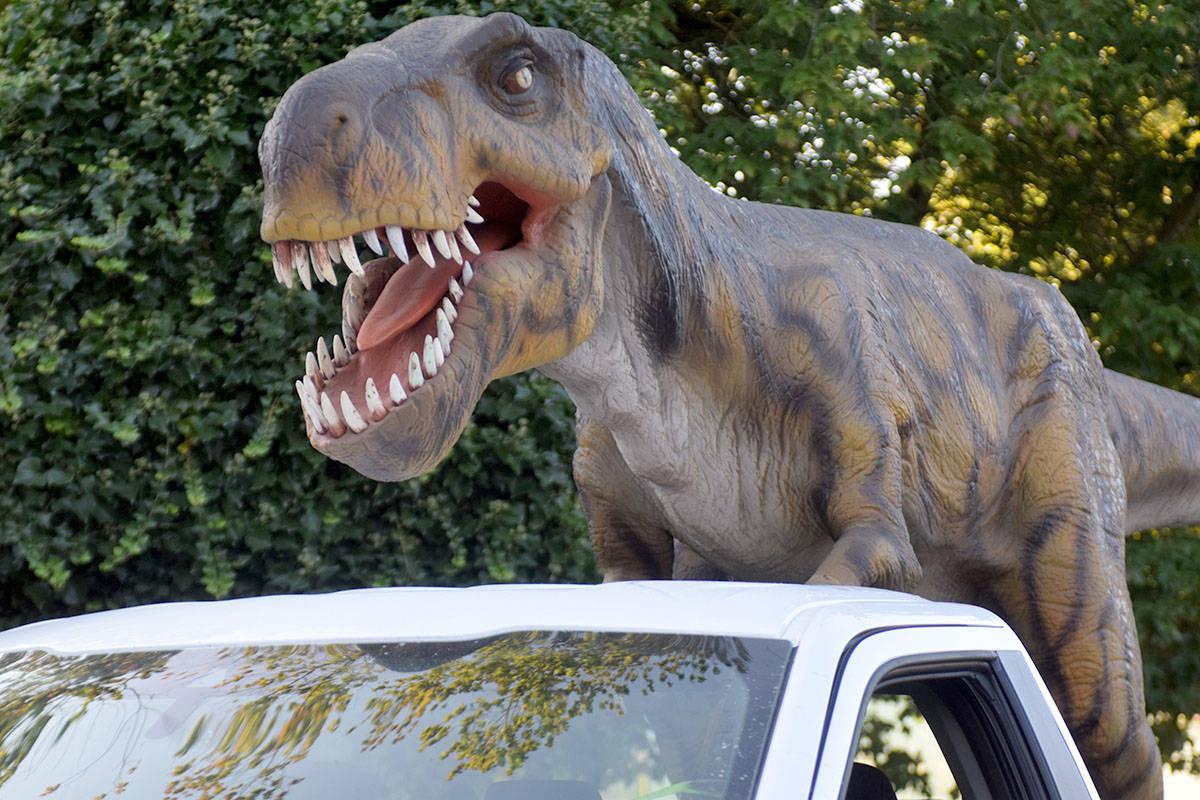 Mark de Bruijn's dinosaur traveled through the Lower Mainland on Friday. (Ben Lypka/Abbotsford News)