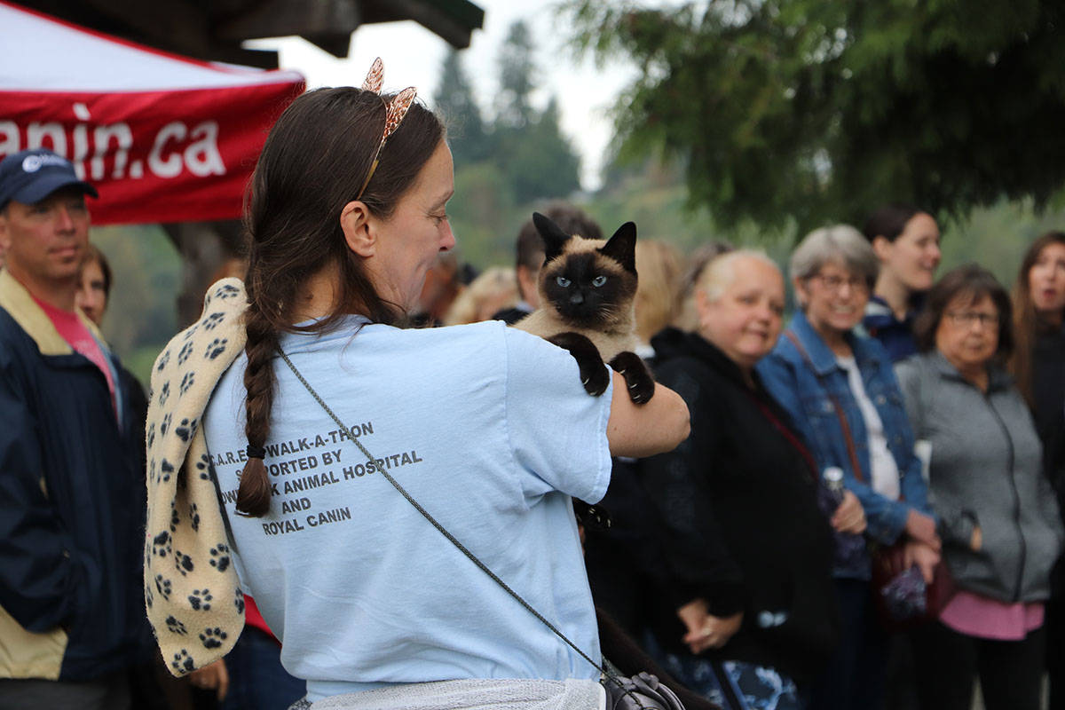 C.A.R.E.S. hosts 16th annual walk for cats to help support at-capacity shelter