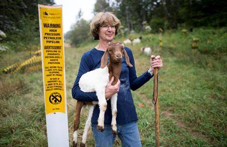 Barbara Gard on her land which runs along the Trans Mountain pipeline and is where construction will take place for the expansion taking away grazing land for her goats and other livestock in Abbotsford, on Tuesday, September, 10, 2019. THE CANADIAN PRESS/Jonathan Hayward