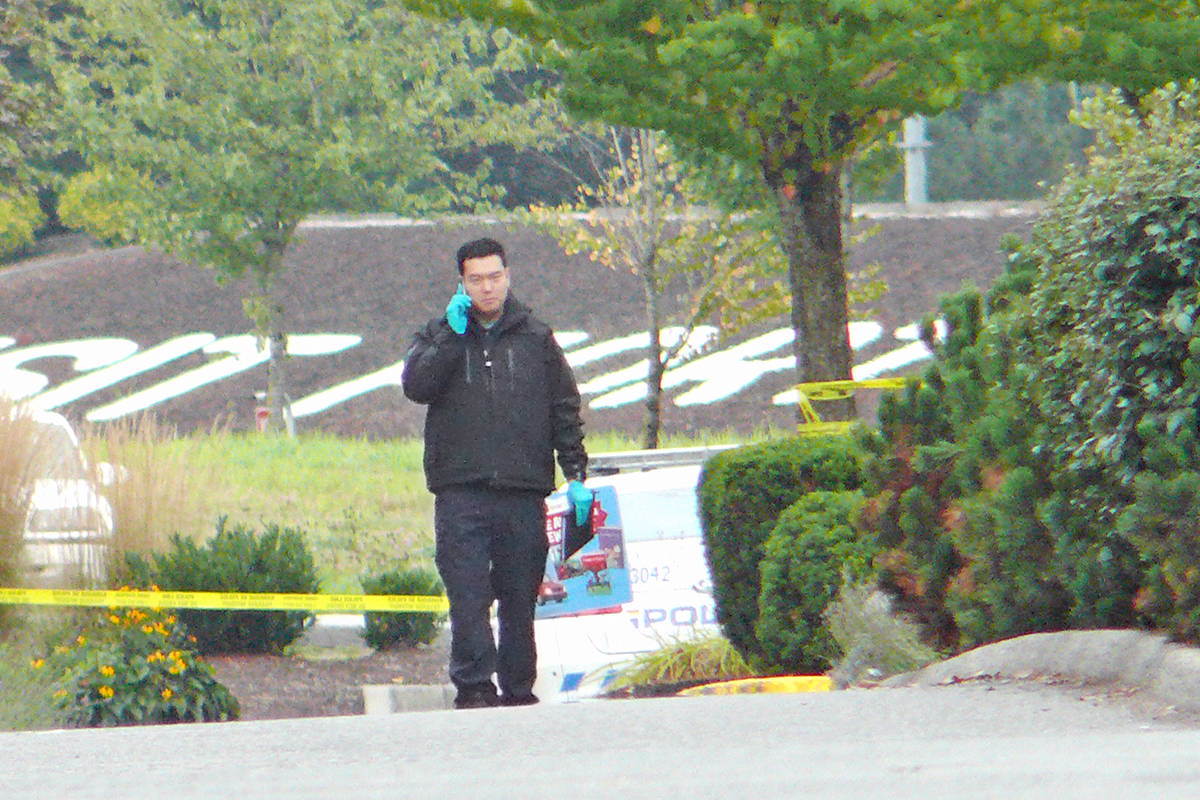 An investigator could be observed looking for evidence along the exit road from the scene of a Tuesday night shooting in Aldergrove near 264 St. and 56 Ave. (Dan Ferguson/Langley Advance Times)