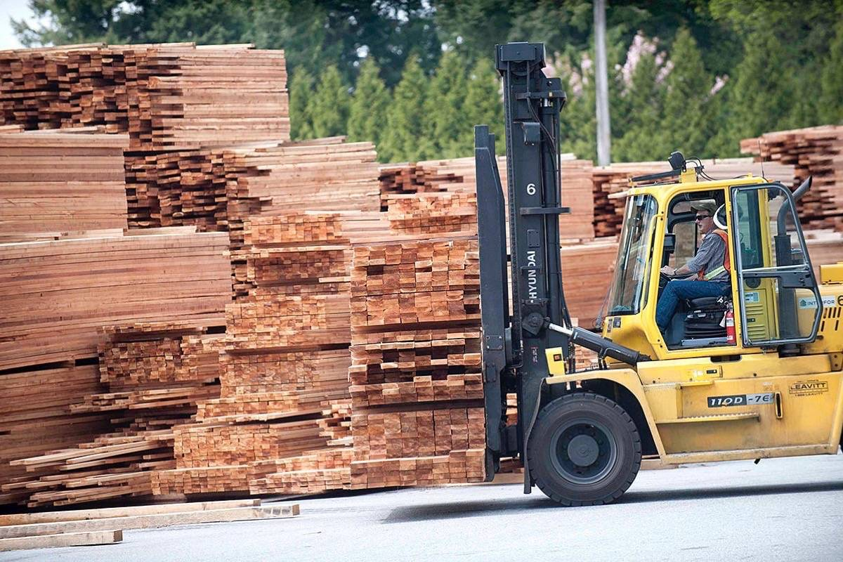 Hammond Cedar employee stacks the high-value wood that remains in demand around the world. The Fraser River site has had a sawmill for more than 100 years, and it's closing by the end of 2019. (Maple Ridge News)