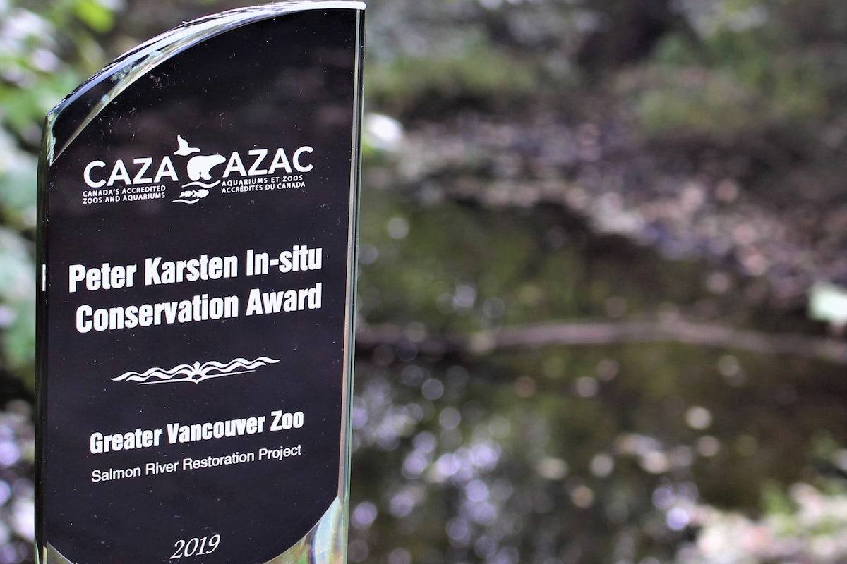 Zoo awarded for its restoration of the Salmon River