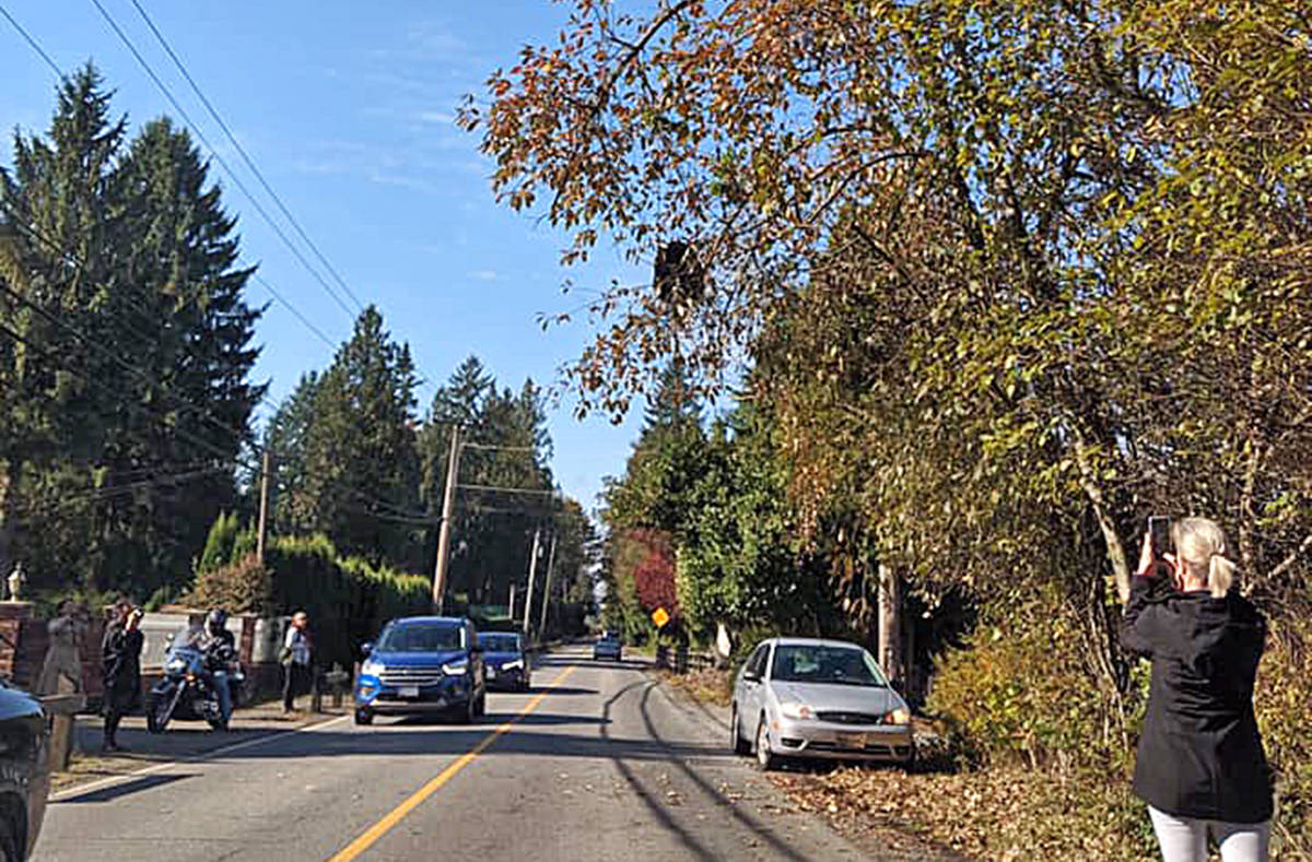 Members of the group Maple Ridge Bears became concerned the bear could fall onto a vehicle or cyclist. (Contributed)