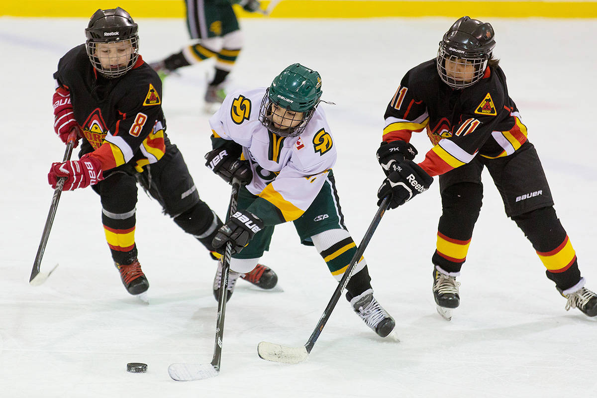 Teams from North Delta and South Delta battle for the puck. (Black Press file photo)