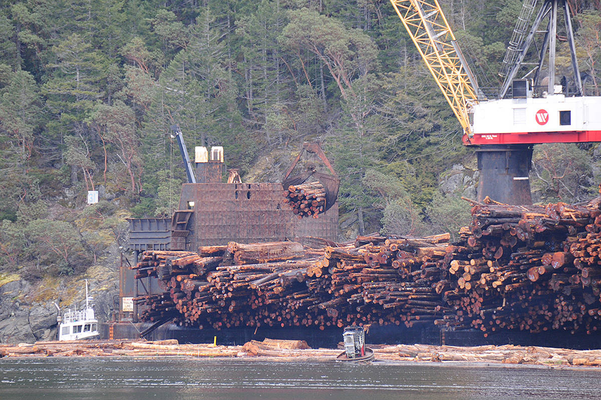 Raw logs are loaded onto a logging ship from a log sort down the Alberni Inlet in March 2019. SUSAN QUINN/ Alberni Valley News