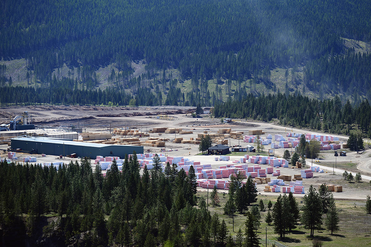 The Elko sawmill is part of the province-wide Canfor sawmill shutdowns. Phil McLachlan/The Free Press