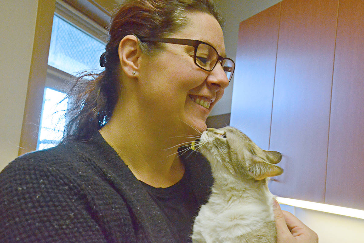 Jennifer Schroeder and Lulu, a five-year-old cat who needs a home. (Matthew Claxton/Langley Advance Times)
