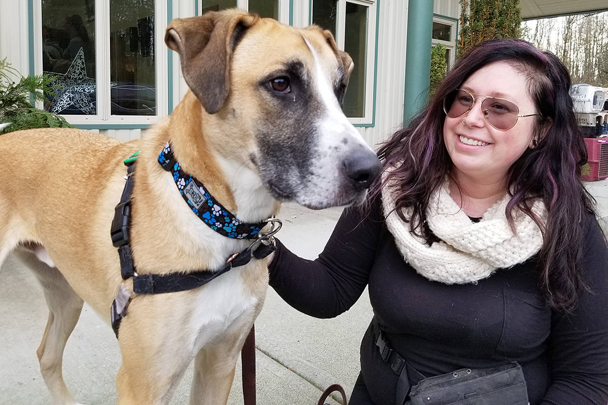 Charles, with foster mom Ash Schulz, is looking for a forever home. (Dan Ferguson/Langley Advance Times)