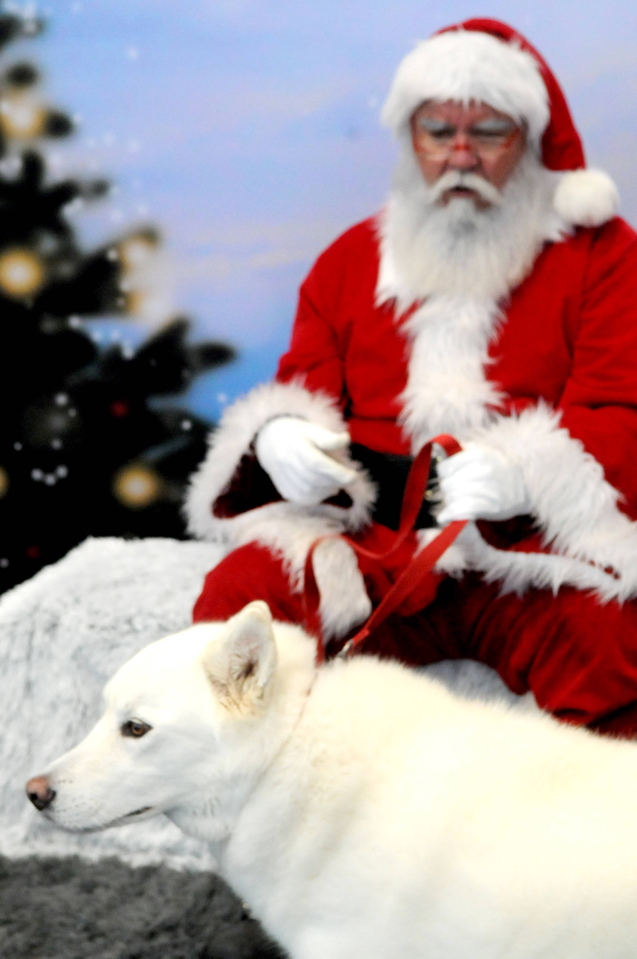 Langley paws pose with Claus