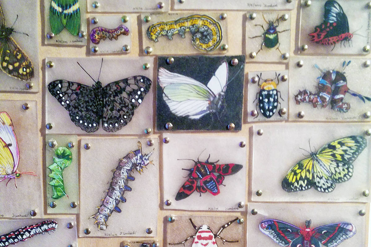 Shrinky Dinks butterflies. This season, the Langley centennial museum will be celebrating toys from the 60s to the 90s. (Wikipedia image licensed under Creative Commons)