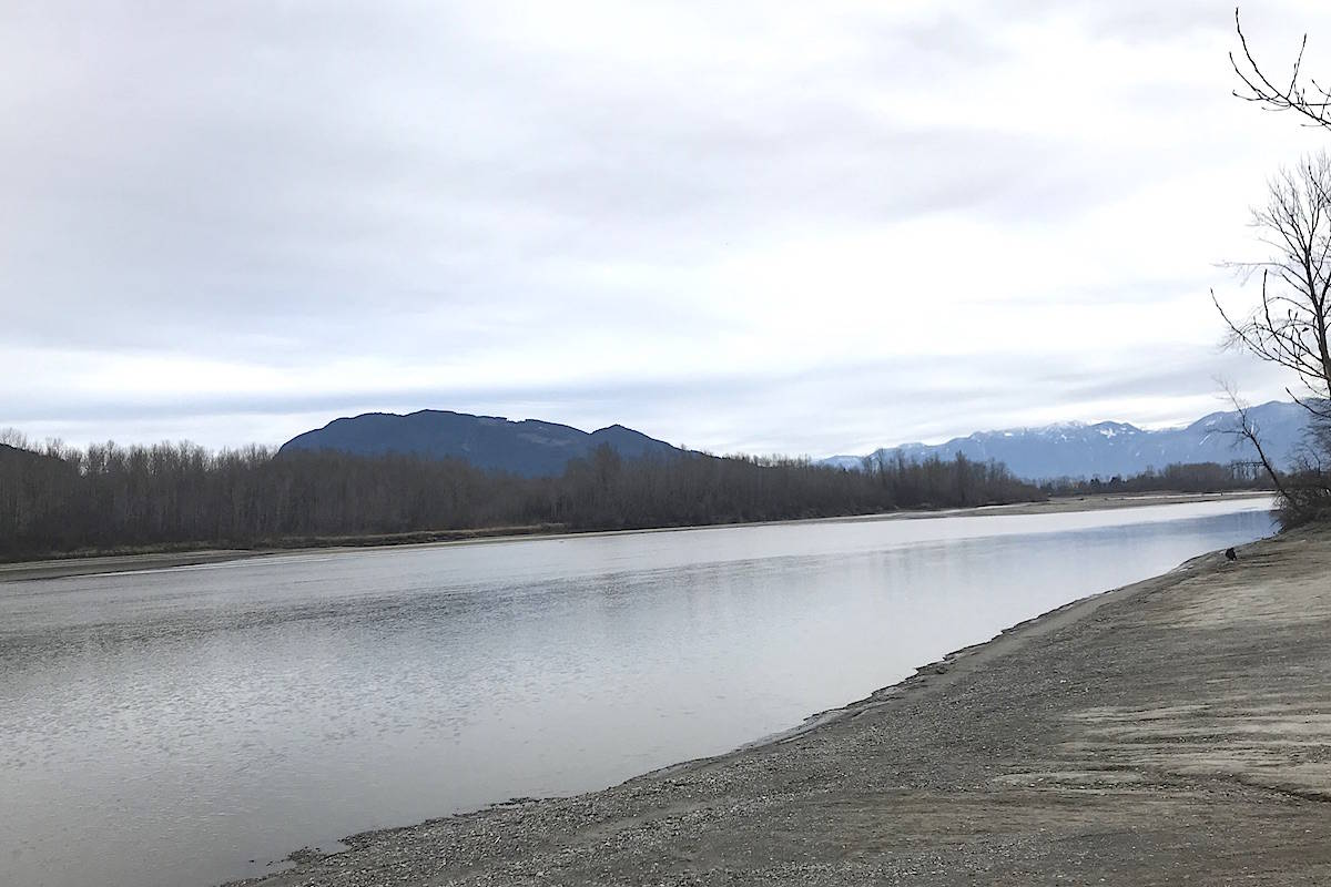 The Fraser River at Island 22 Regional Park. (Jennifer Feinberg/ The Progress)