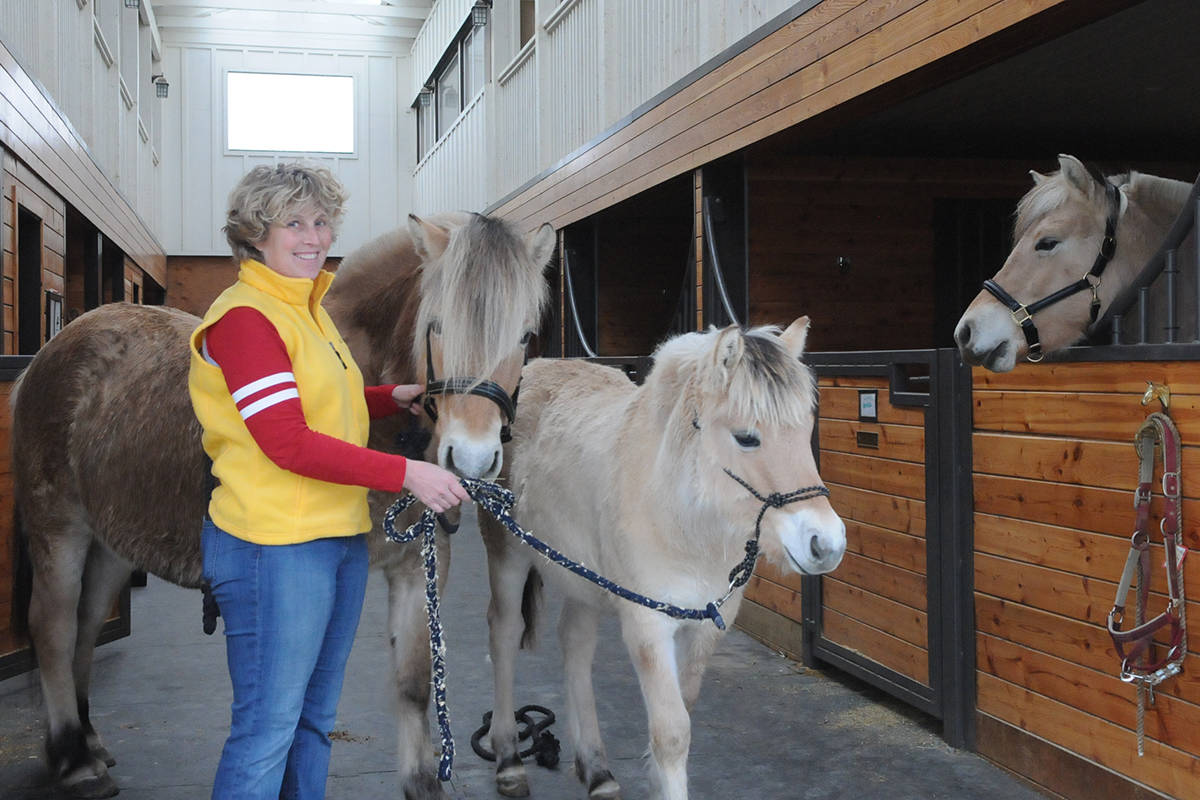 South Langley farm welcomes three new fjord mares from Germany