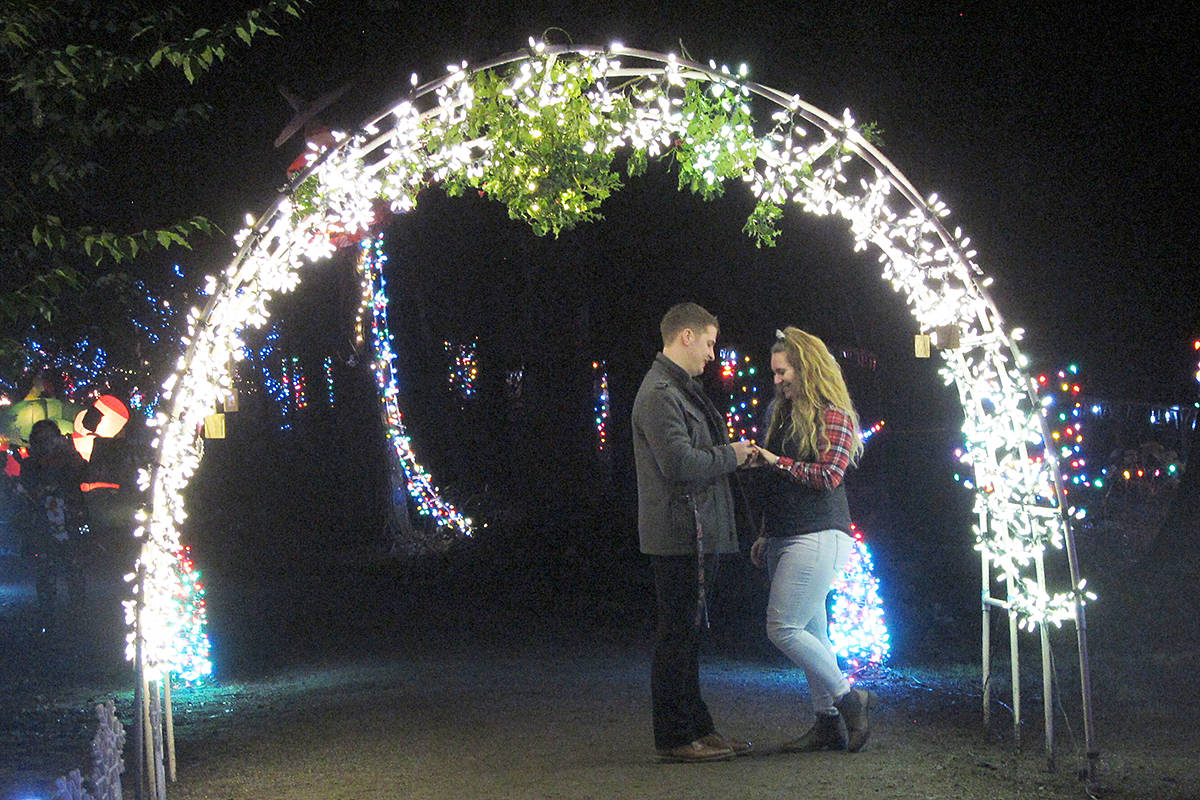 What better place to proposed than under a mistletoe archway at Williams Park? Dan Sanders surprised Keziah Van Vliet on Saturday, Dec. 8. (Jen Sanders/Special to the Langley Advance Times)