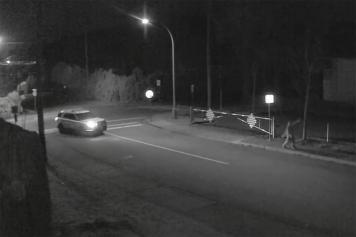 The Grinch who Stole a Hedge: Security camera captures Chilliwack tree theft