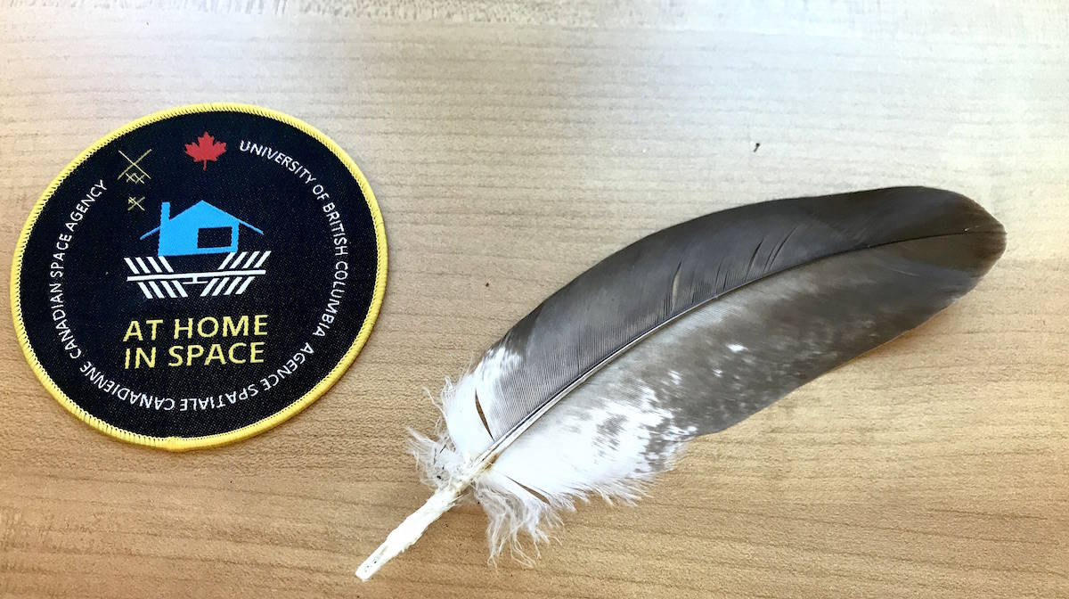 The eagle feather that flew to space along with the mission patch from the At Home in Space program. (Jennifer Feinberg/ The Progress)