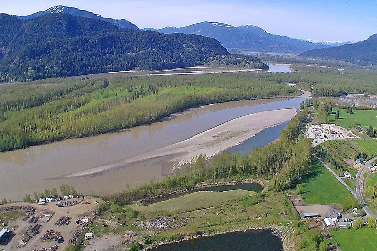 The pre-freshet Fraser River near Chilliwack, April 2018. (Paul Henderson/ The Progress)