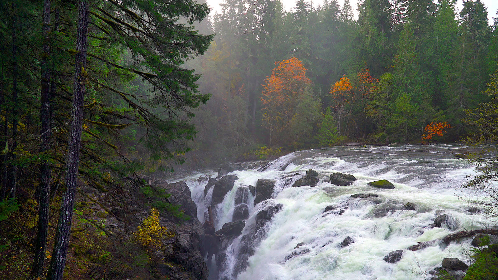 """Englishman River Falls, located in its namesake provincial park, is one of the locations in the """"Amazing Places"""" Geotour on Vancouver Island. (Photo courtesy of Mount Arrowsmith Biosphere Region)"""