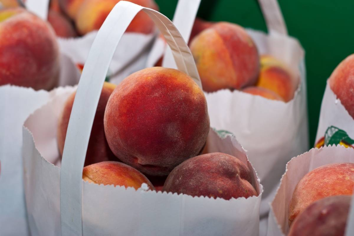 Man starts petition to bring peaches back to Peachland