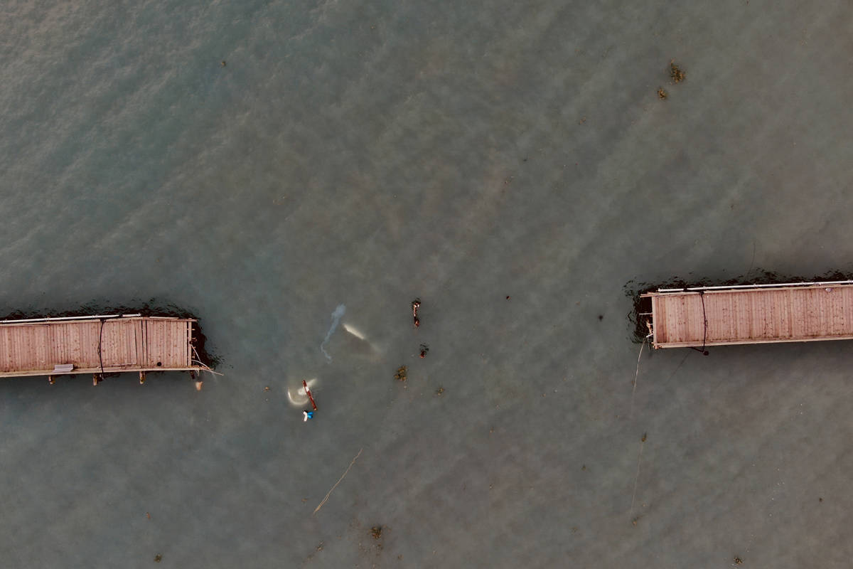 Aerial image of the White Rock pier after it was damaged. (Douglas Shi file photo)