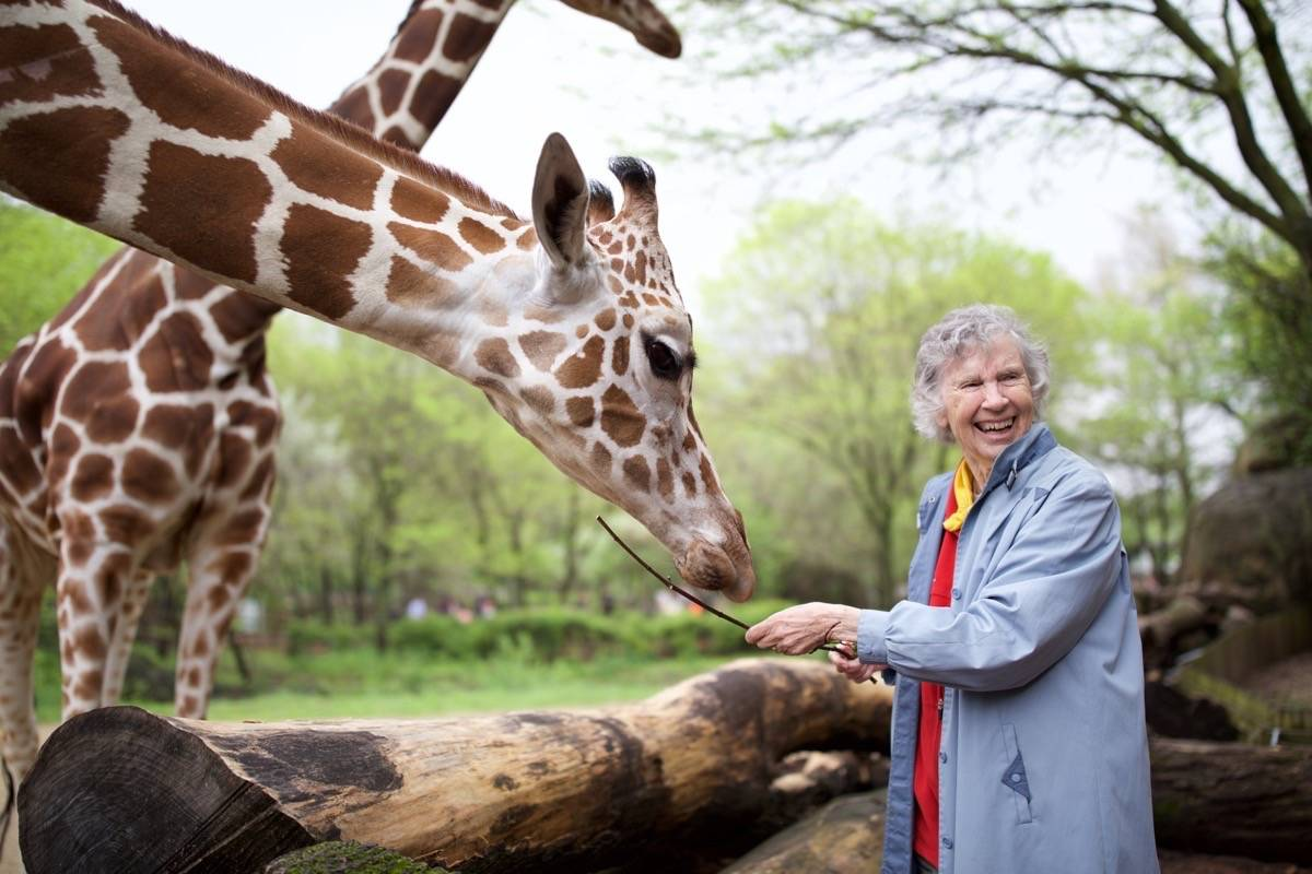 """""""The Woman Who Loves Giraffes"""" profiles Anne Innis Dagg — pictured at the Brookfield Zoo in Chicago in 2016 — at last being recognized for her groundbreaking work in Africa more than half a century ago. (Courtesy Elaisa Vargas)"""