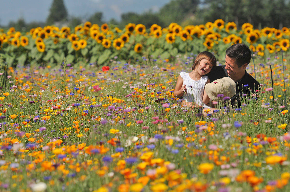 'Fabulous-frivolity-of-a-forest-of-flowers' by Jenna Hauck with the Chilliwack Progress.