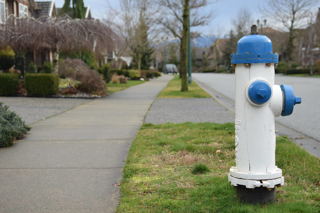 Twenty-five gold-plated fire hydrants on Eagle Mountain were repainted by the city in 2018. Tyler Olsen/Abbotsford News