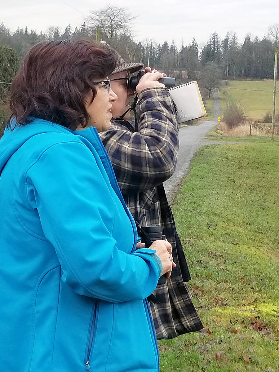 Joanne Rosenthal and Bob Puls tally birds. The 120th annual bird count was conducted in Langley, as well as other areas of the Lower Mainland, on Saturday (Dec. 28).(Dan Ferguson/Langley Advance Times)