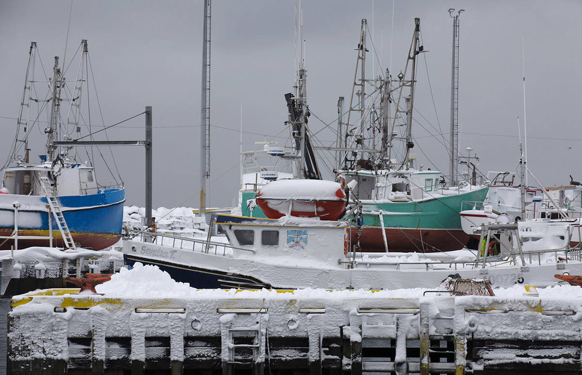 Fishing boats are tied up at Fort Amherst in St. John's on Monday, January 6, 2020, following the first major snowstorm of the year. THE CANADIAN PRESS/Paul Daly