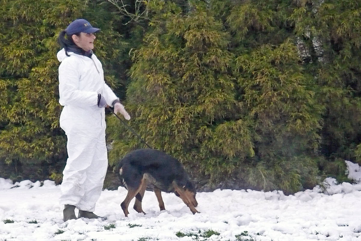 An SPCA employee was observed with a dog outside a Langley house in the 5500 block of 216 Street on Sunday (Jan. 19) where several enforcement officers arrived around 4 p.m. (Dan Ferguson/Langley Advance Times)