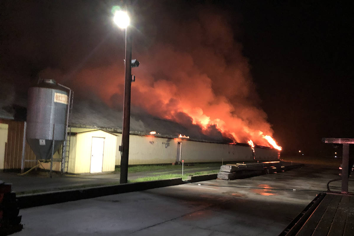 An early morning fire at one of Greendale resident Chris Thompson's chicken barns on April 11, 2019. Thompson has grainy security footage showing a person lighting the fire. (Chris Thompson)