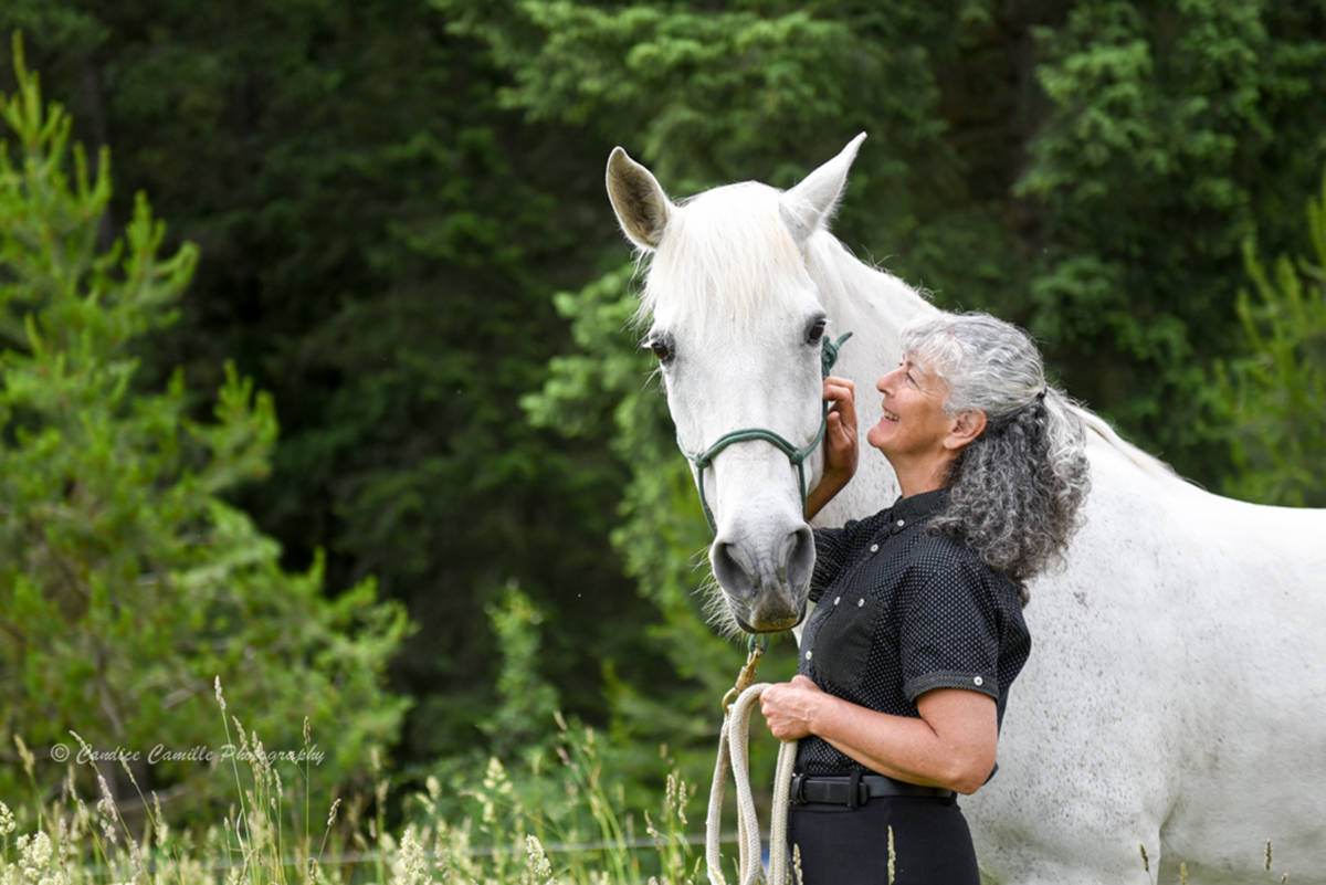 Beloved horse dies in Shuswap after shelter collapses under snow