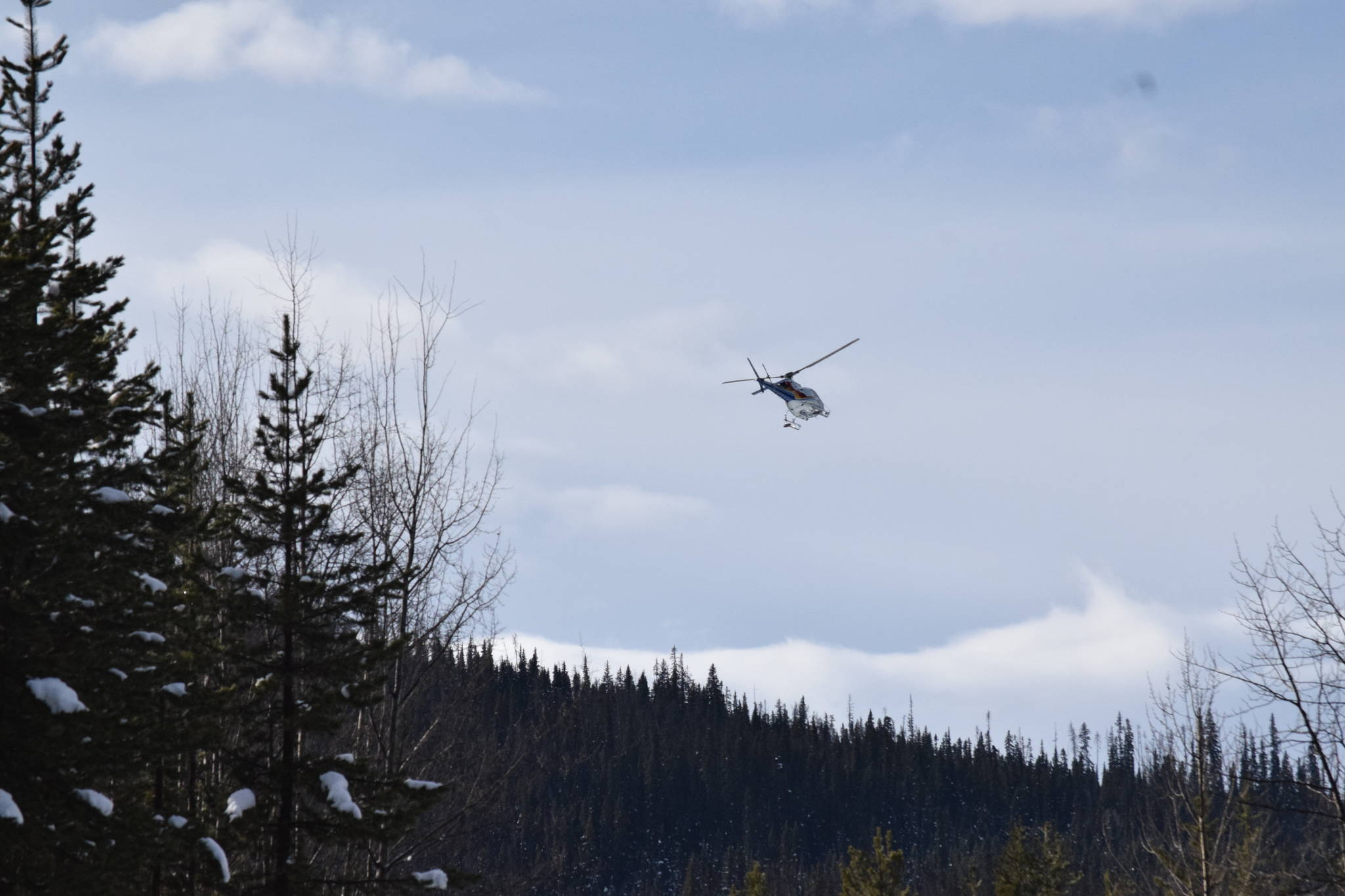 An RCMP helicopter pictured during the afternoon of Feb. 5 flying above the Morice West Forest Service Road. (Trevor Hewitt photo)