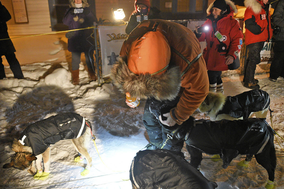 Brent Sass shares a moment with some of his dogs after reaching the Dawson City checkpoint on Feb. 6 during the 2020 Yukon Quest. Sass was the first musher to Dawson, arriving at 5:43 a.m. (John Hopkins-Hill/Yukon News file)