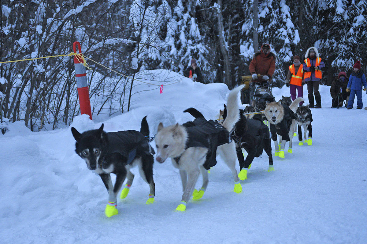 Brent Sass's team leaves the restart point in Dawson City on Feb. 7 during the 2020 Yukon Quest. (John Hopkins-Hill/Yukon News file)
