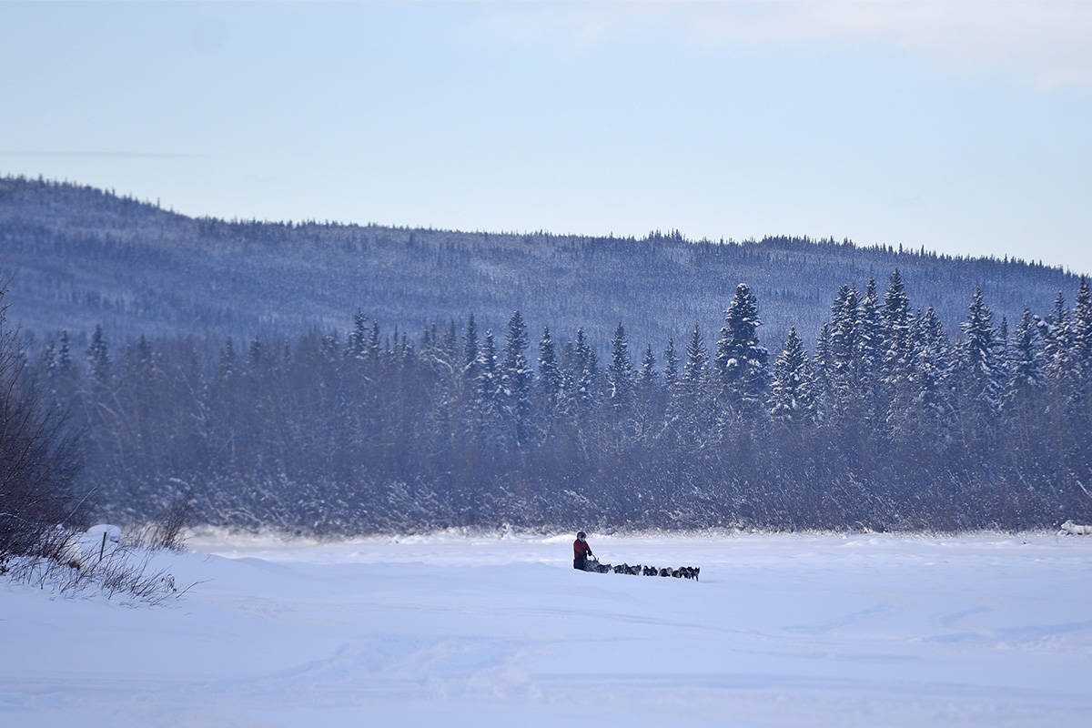 Brent Sass and his team approach the Pelly Crossing checkpoint along the Pelly River on Feb. 9 during the 2020 Yukon Quest. (John Hopkins-Hill/Yukon News file)