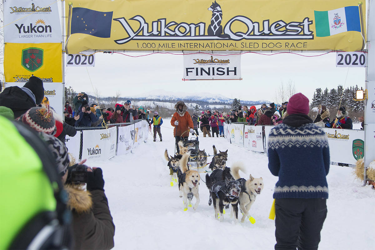 Brent Sass crosses the Yukon Quest 1,000 Mile International Sled Dog Race finish line in Whitehorse on Feb.11 just before 3 p.m. to claim a first place victory for his second year in a row. (Crystal Schick/Yukon News)