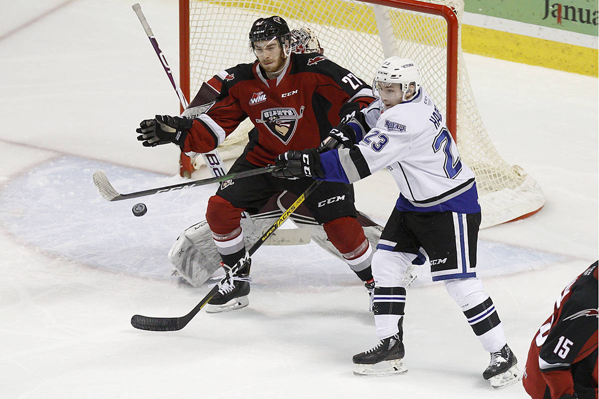 Giants won two of three games against the Victoria Royals this weekend. But the last match, on home ice at the Langley Events Centre Sunday afternoon, they lost 4-1. (Kevin Light/Vancouver Giants)