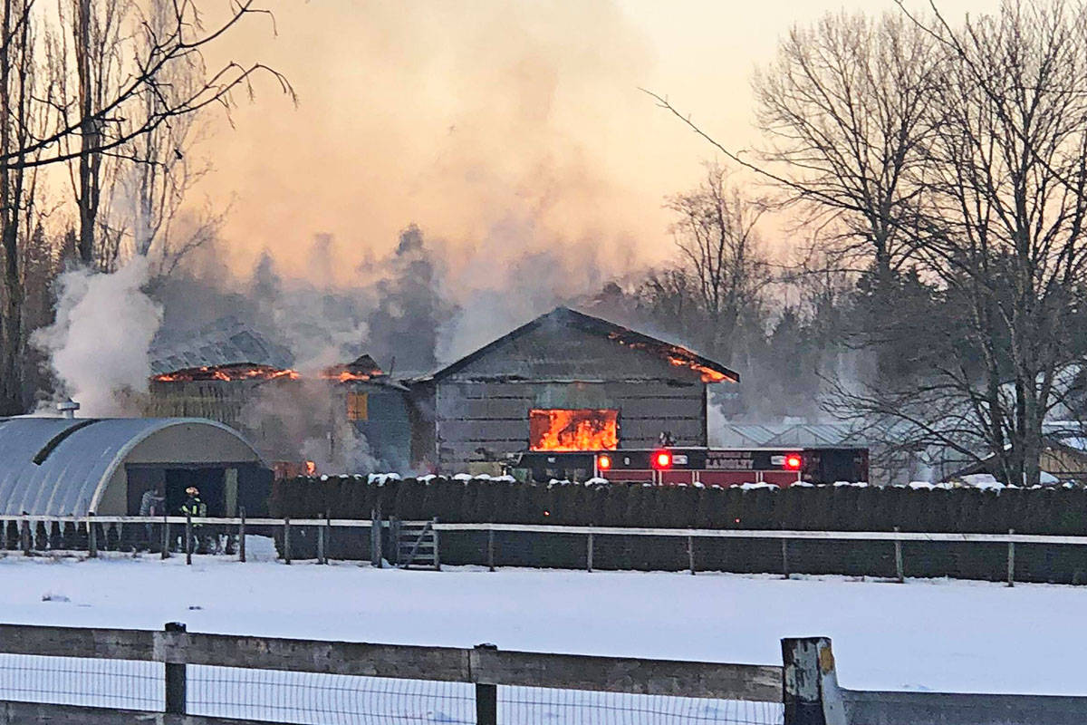 FILE - A barn fire on the afternoon of Feb. 13 killed three sheep in Langley. (Brad Buckle photo)