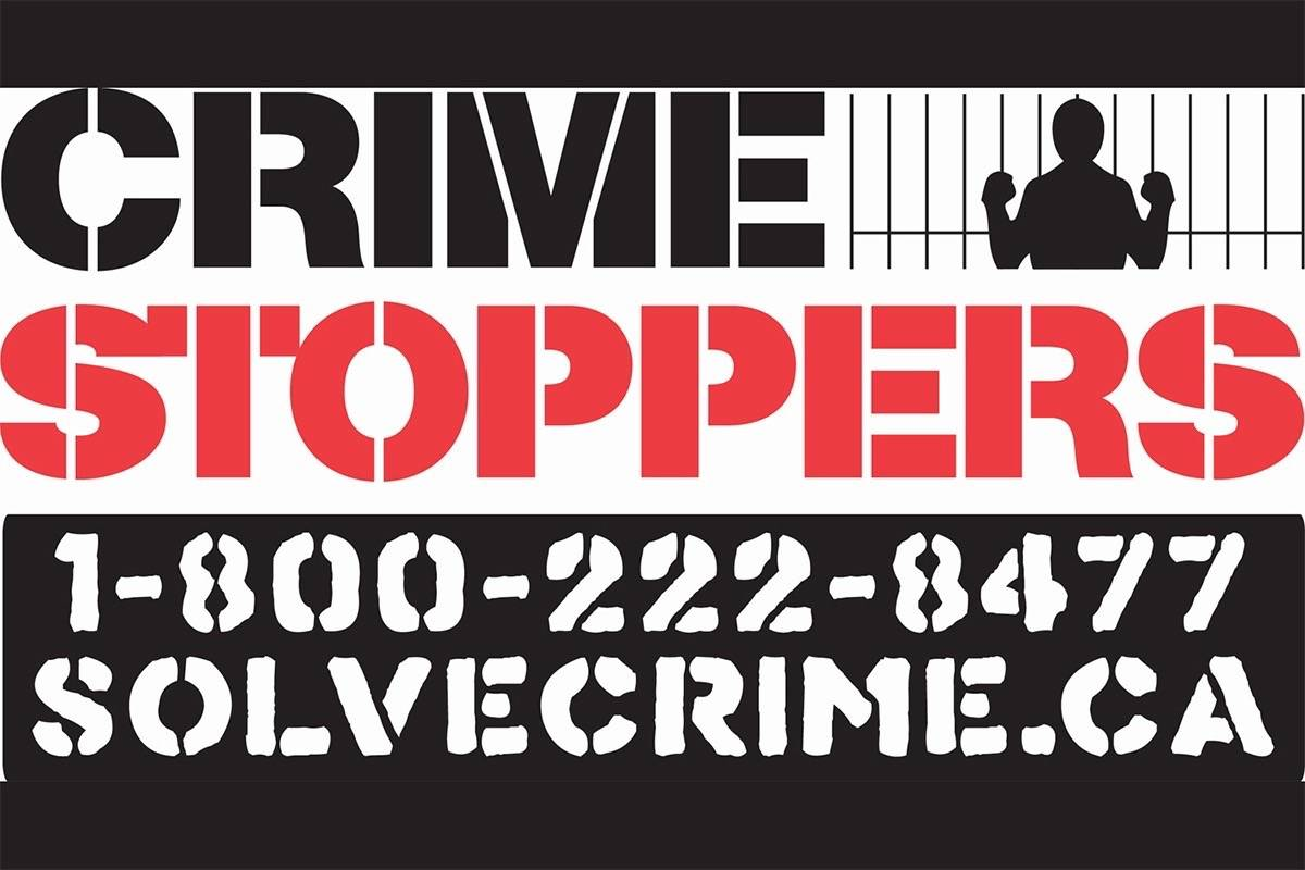 Crime Stoppers image