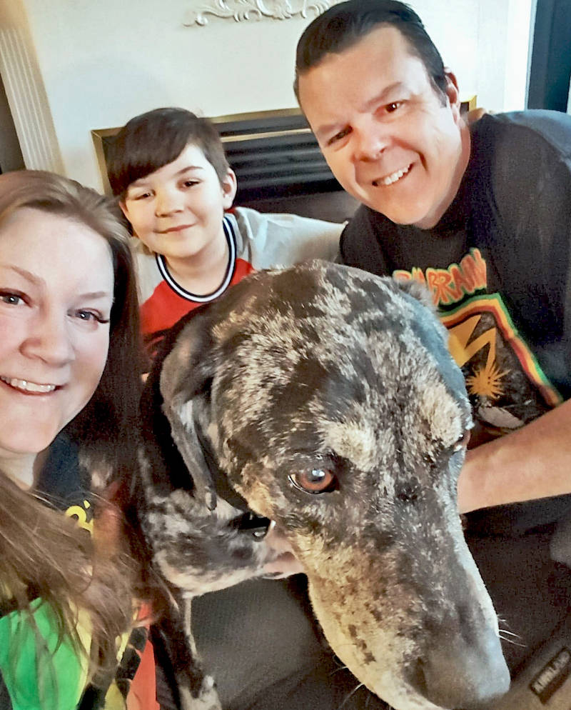 VIDEO: Dog missing in Aldergrove since winter sees his family again for the first time