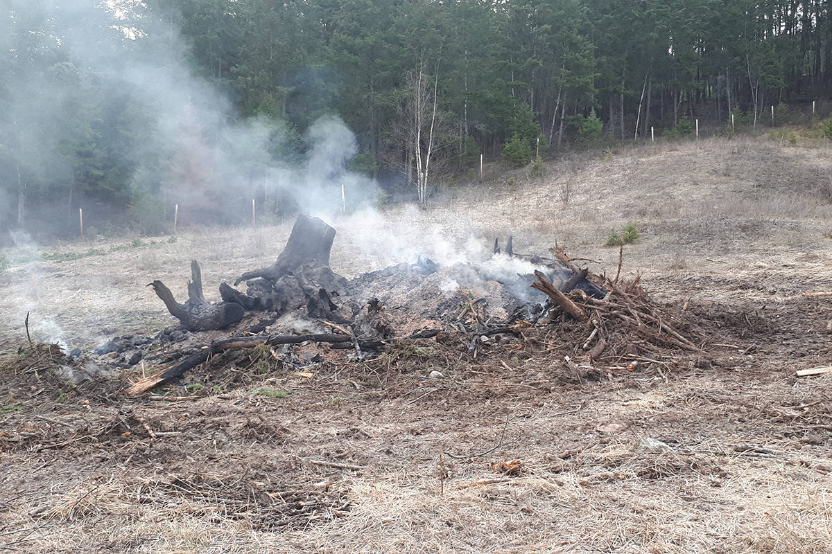 There will be a Category 2 and 3 fire ban in place as of Monday, April 16 in B.C. (Monica Lamb-Yorski - Black Press Media)