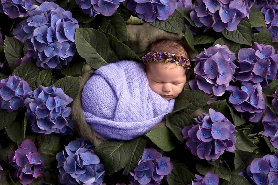 A Vernon photographer gave away 20 newborn sessions to babies whose photography bookings have been disrupted by COVID-19. (Image Studios photo)