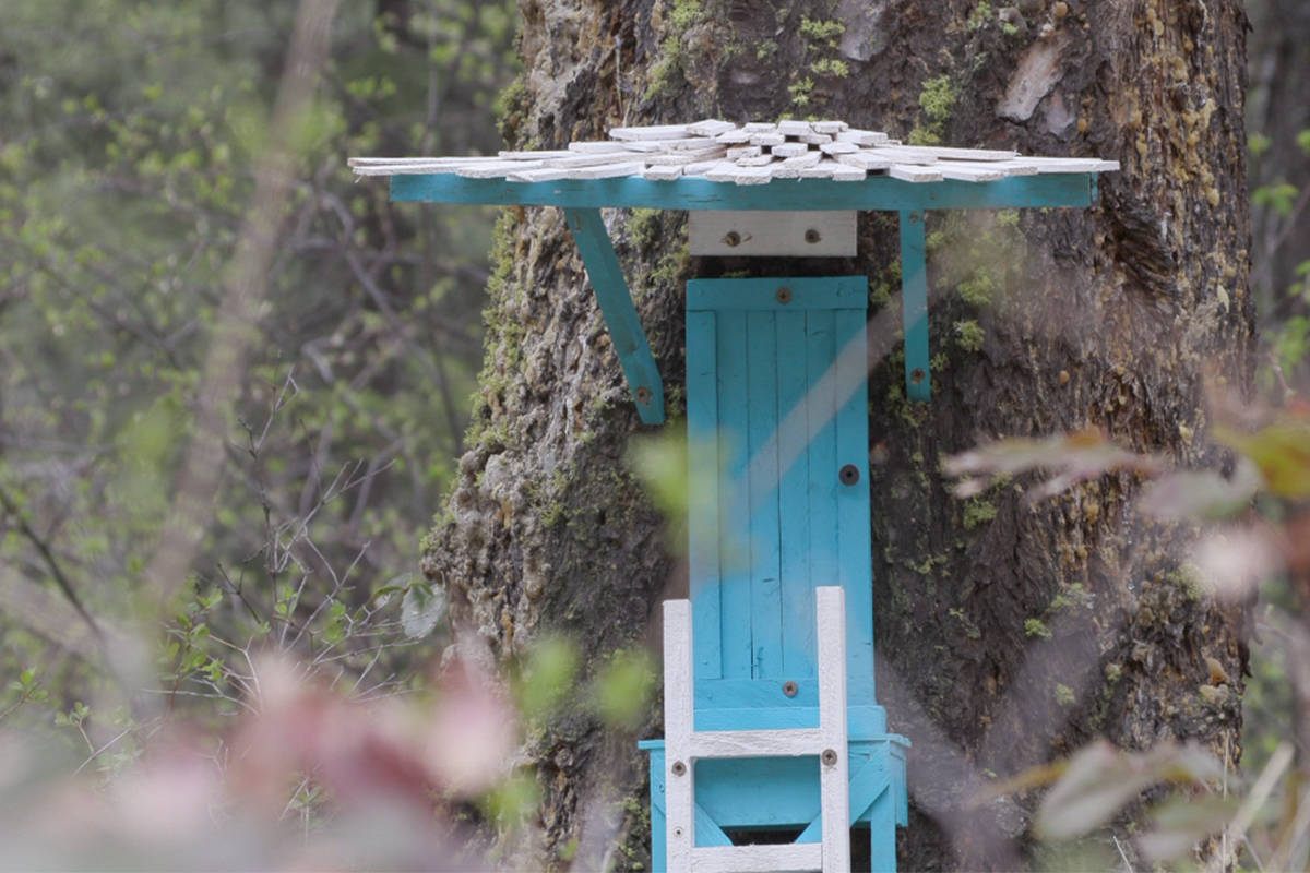 The beautifully crafted fairy doors can be found on several trees along the trails in the Rose Valley Regional Park. (Twila Amato - Black Press Media)