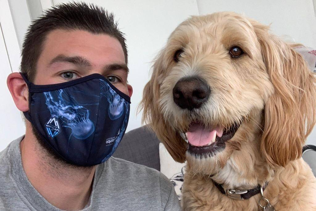 aThe Vancouver Whitecaps had sold more than 57,000 masks as of Monday morning with all net proceeds going to help the financially troubled Vancouver Aquarium. Whitecaps goalkeeper Maxime Crepeau and his dog Diego are seen in an undated handout photo. THE CANADIAN PRESS/HO-Vancouver Whitecaps