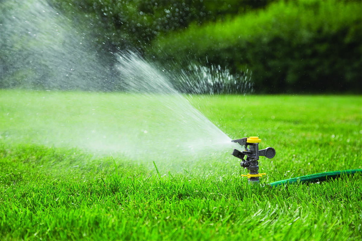 Stage 1 water restrictions take effect across Metro Vancouver beginning Friday, May 1. (File photo)