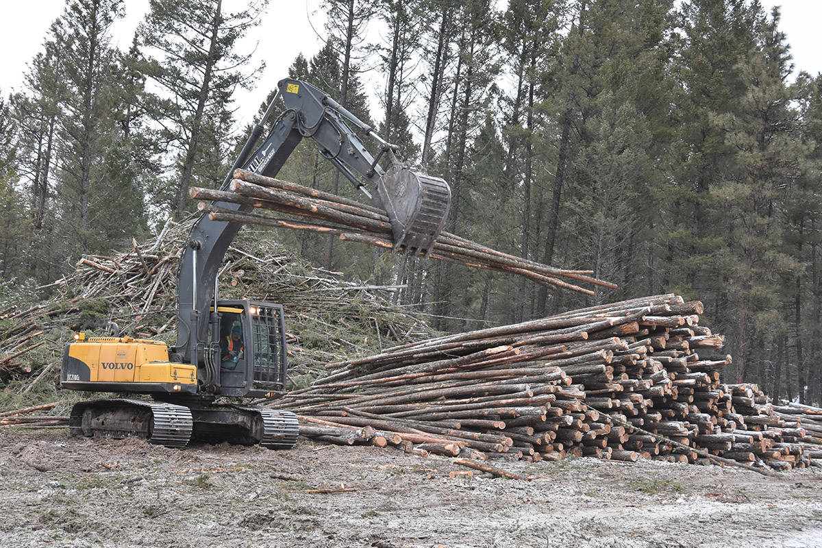 REN Energy will source waste wood from ATCO Wood Products and other forest companies to create Renewable Natural Gas in a new facility planned for Park Siding just outside of Fruitvale. (Townsman file photo)