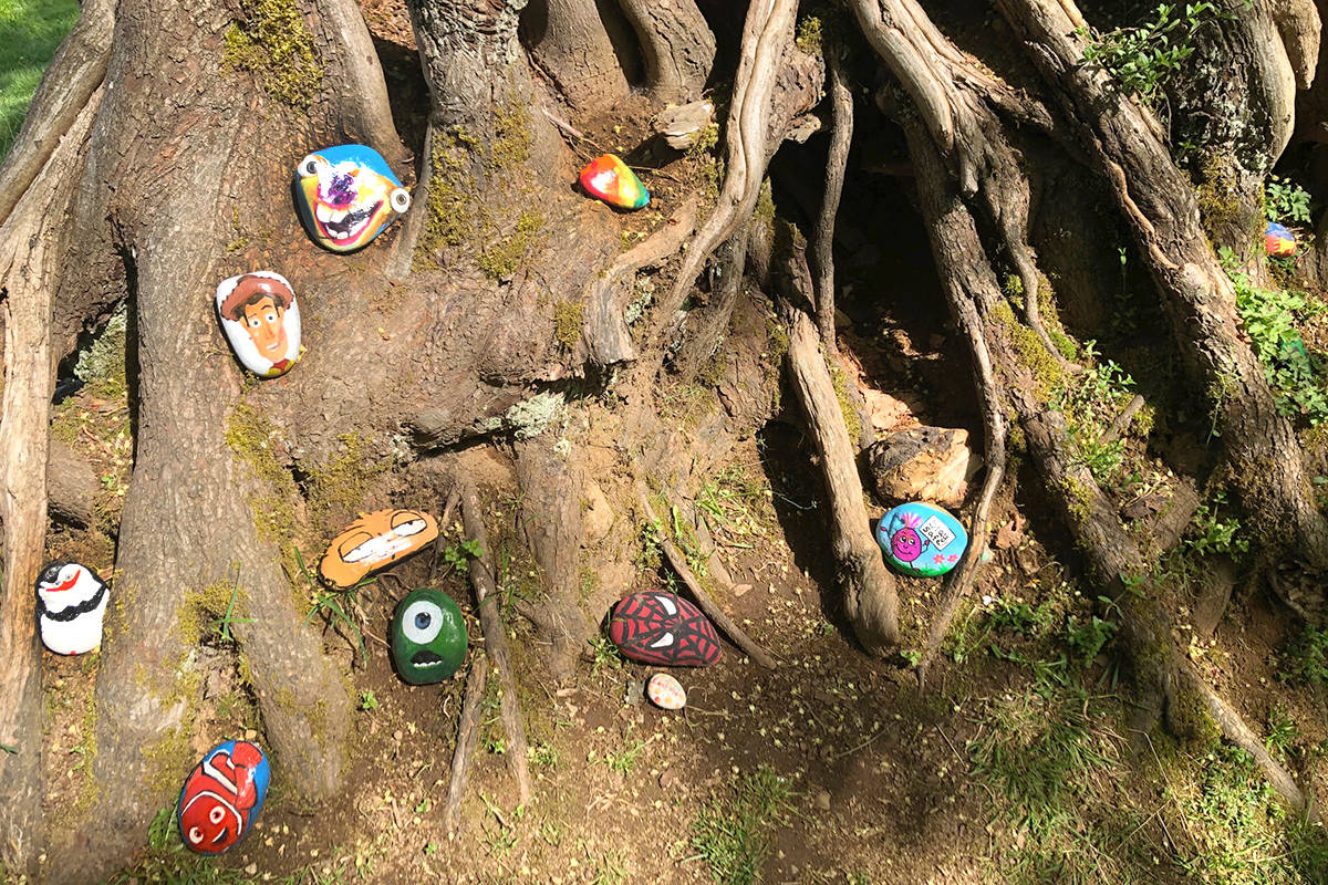Elves have been in Alex Hope Park, writes Joe Schiller who shared this photo with the Langley Advance Times on May 5, 2020. (Joe Schiller/Special to Langley Advance Times)