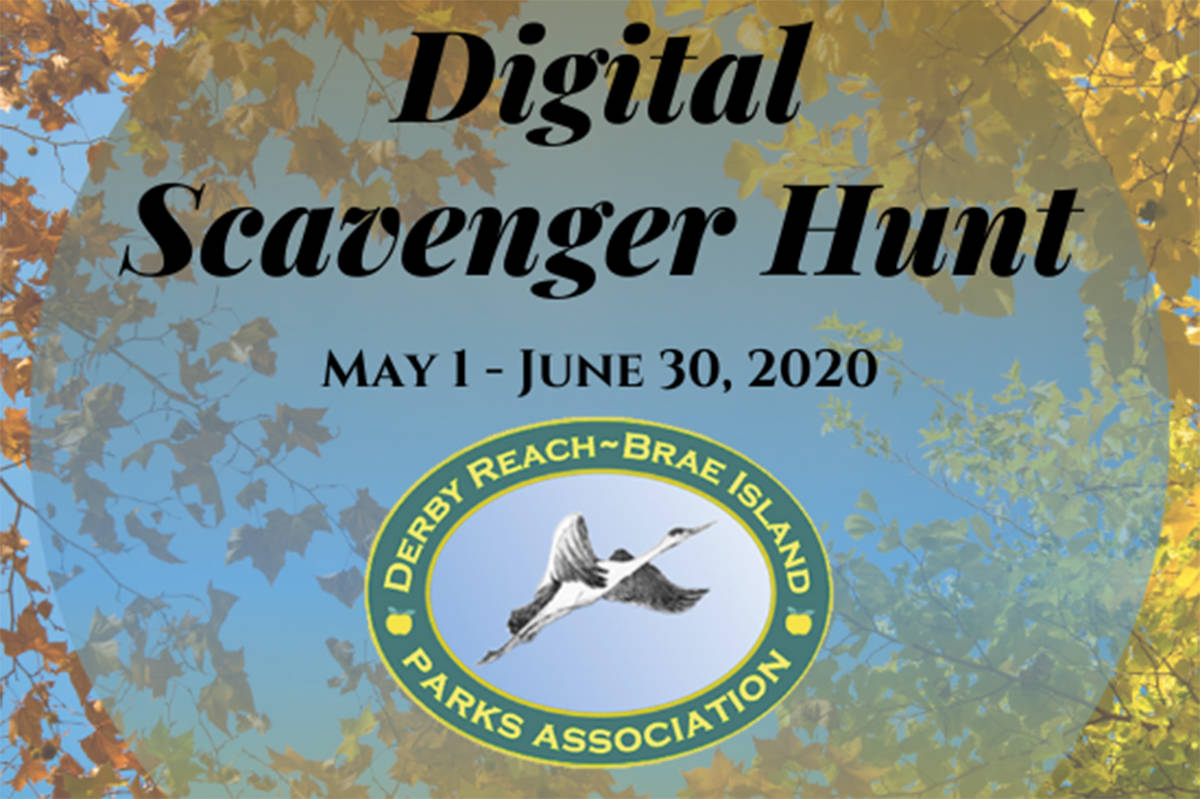 Derby Reach Brae Island Parks Association (DRBIPA) is hosting a digital scavenger hunt photo contest in lieu of usual spring or summer programming. (Derby Reach Brae Island Parks Association/Special to the Langley Advance Times)
