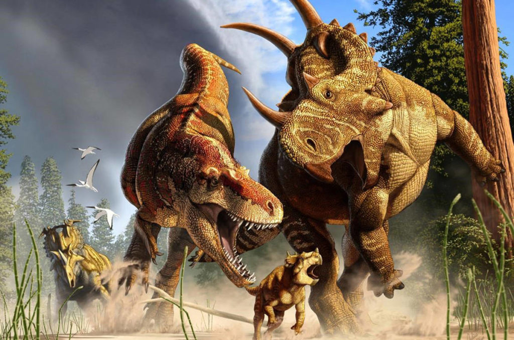A Daspletosaurus (centre left), a close relative of T. rex that shared its way of moving, chases down a Spinops with a Coronasaurus (right) looking on in a handout ilustration. (Julius Csotonyi photo)