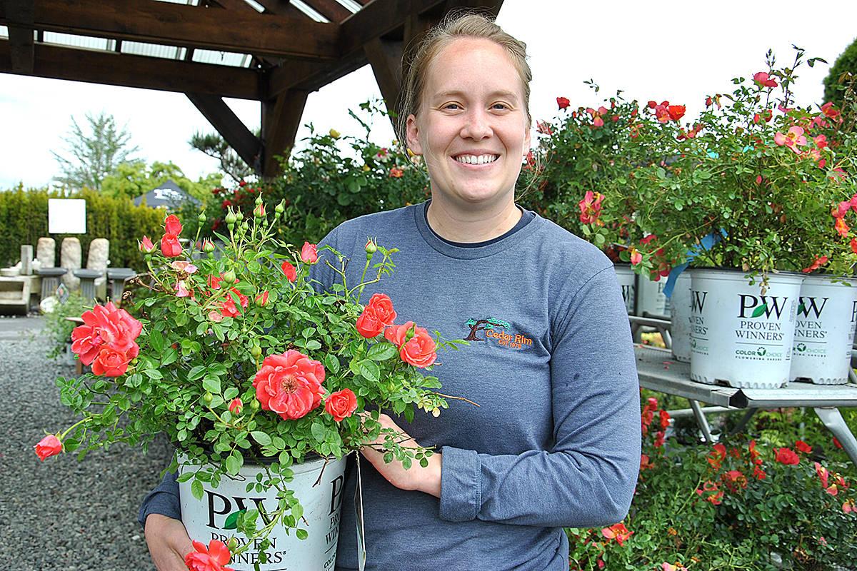 VIDEO: Langley garden shops buzzing